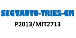 Logo_SEGVAUTO3